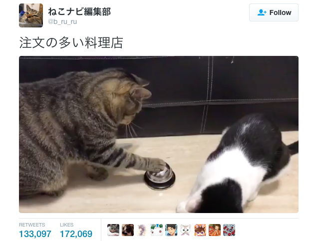 Cute cats put Pavlov's dog to shame by ringing bells with their own paws to get treats!【Video】