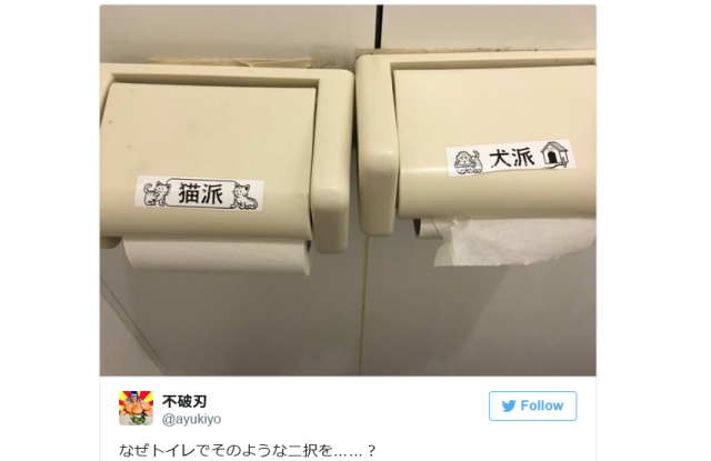 Japanese arcade restroom asks customers to declare loyalty for dogs or cats in toilet paper poll