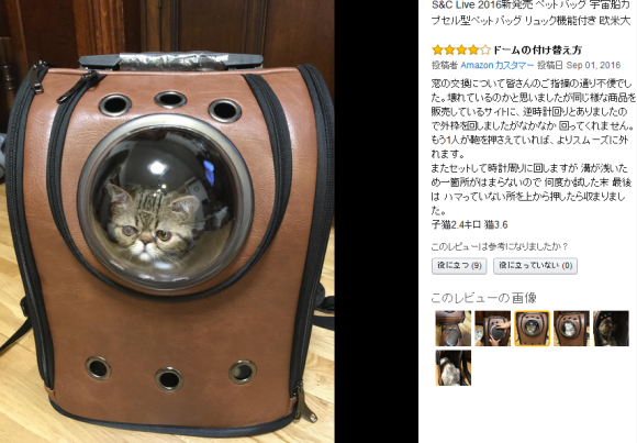 cat-capsule-bag-02