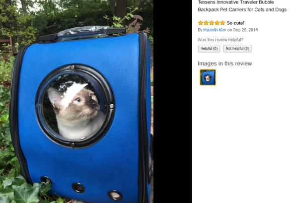 cat-capsule-bag-05