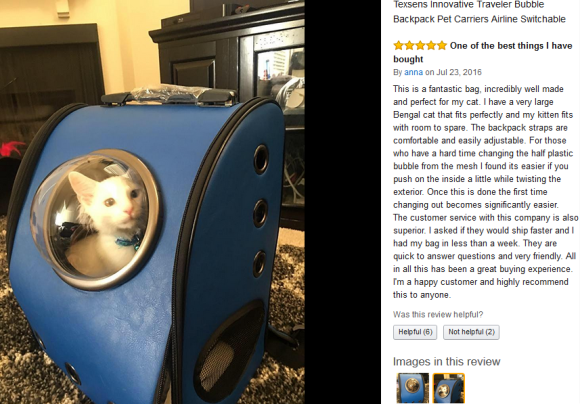 cat-capsule-bag-06
