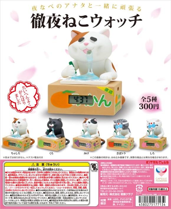 tetsuya-cat_dp
