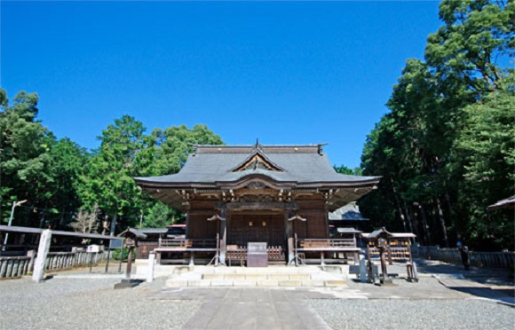 """Cat shrine"" status causing problems for Japan's millennium-old Izumoiwai Shrine"