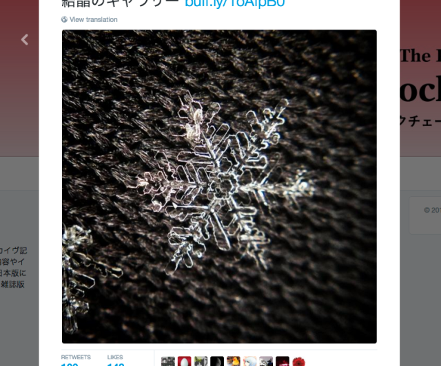 Unbelievable photographs of snowflakes from Tokyo's recent snowstorm taken with iPhones 【Pics】