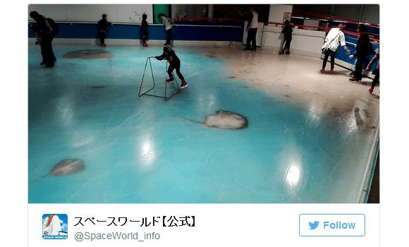 Fukuoka amusement park draws anger for skating atop 5,000 sea creatures frozen in ice