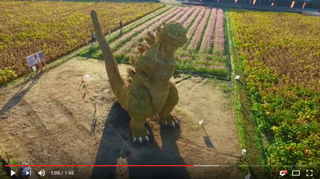 Gigantic straw Godzilla sculpture appears in Japan – establishes itself as King of Straw-nsters 【Pics】