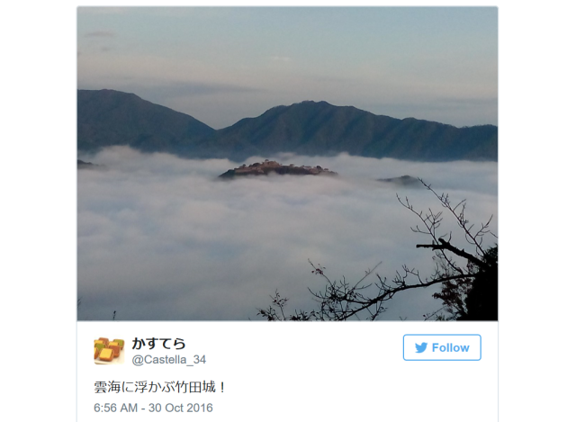 "Right now is the very best time to go to Japan's ""castle in the sky,"" and here's why【Pics, Vids】"