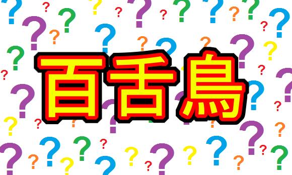 wtf-kanji-names-07