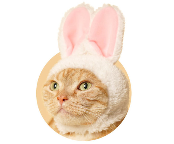 Cats cosplay as bunnies in Japan with new capsule toy feline hat collection