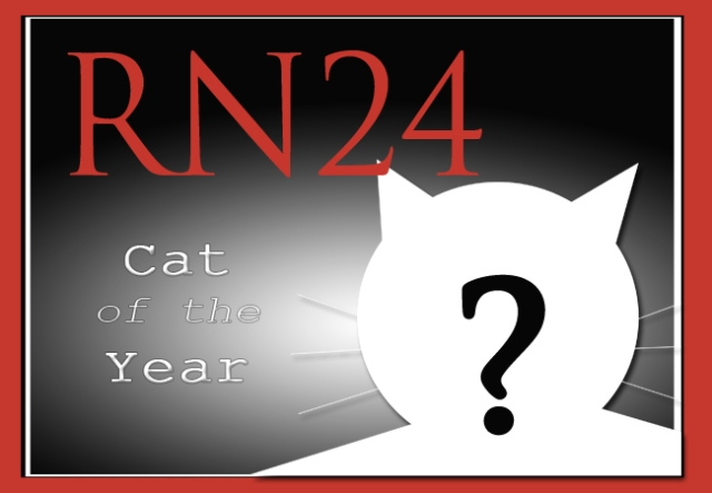 "Help choose RocketNews24's ""Cat of the Year 2016"""