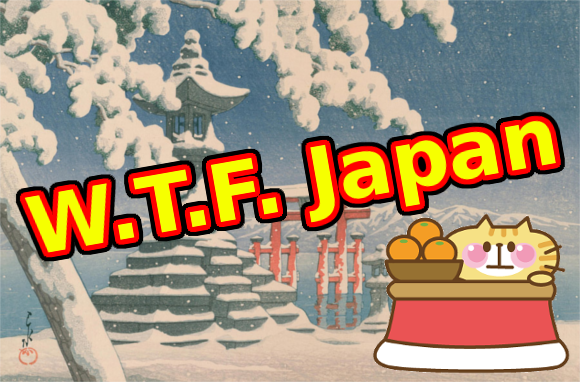 W.T.F. Japan: Top 5 Japanese winter foods【Well-Fed Top Five】