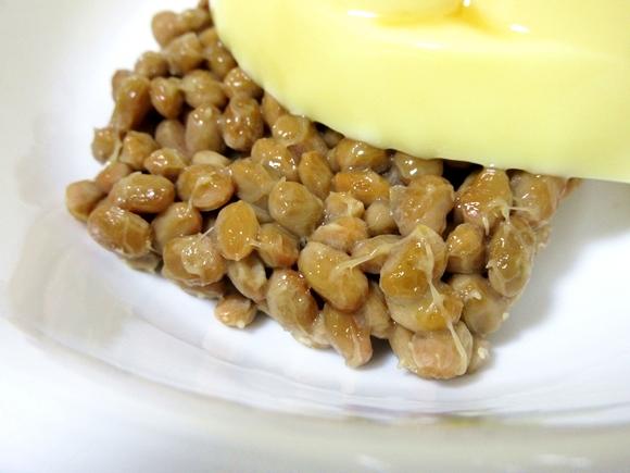 natto-purin-9