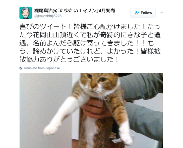 Japanese man shows us the best thing to catch while playing Pokémon GO: Your lost cat