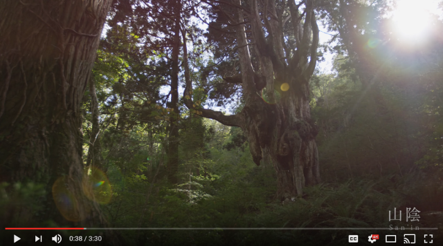 San'in, Japan is breathtakingly beautiful especially when captured with a 4K video camera【Video】