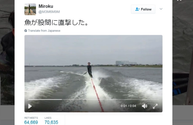 Japanese water skier gets hit in crotch by jumping fish【Video】