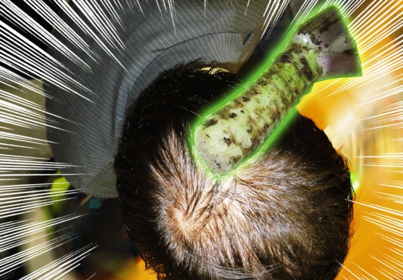 Wasabi found to promote hair growth 3 times faster than minoxidil