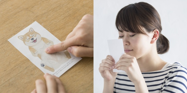 Japanese company creates scratch and sniff cards that smell like the bellies of cats and dogs