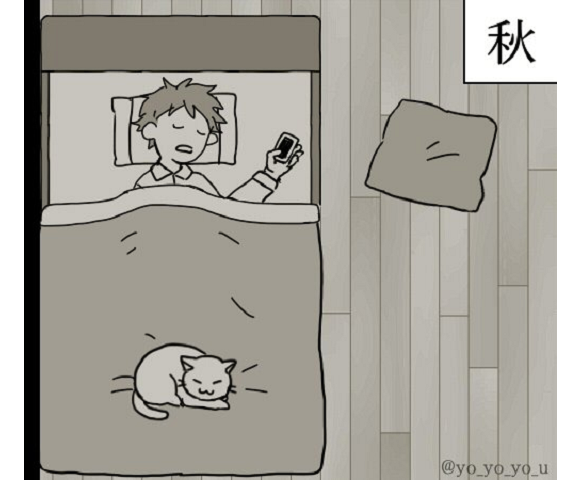 """Feeling the seasons through cats"" manga warms the heart by showing how pet kitty warms itself"
