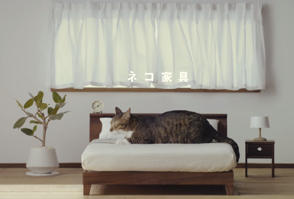 Complete set of bedroom, living room furniture for cats created by Japanese woodworking companies