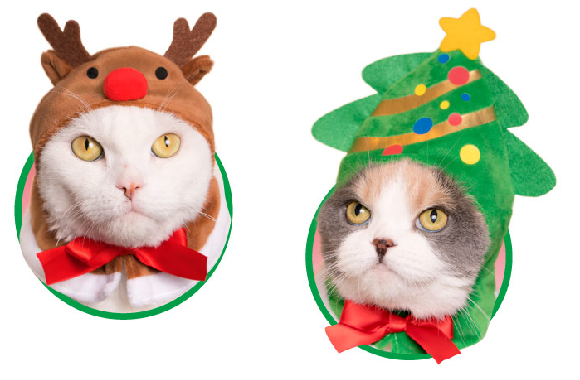 Christmas cat capsule toy hats from Japan will make your holiday feline festivities jolly