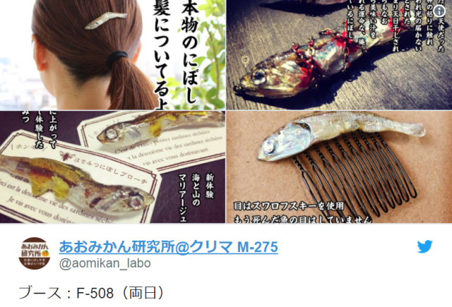 Are dried sardines the next new fashion trend? Japanese artist turns snack food into accessories