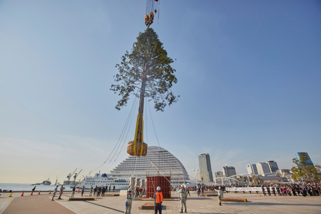 "Kobe set to light up ""World's Number-One Christmas Tree"" in all its confusing glory"