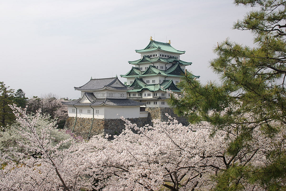 Nagoya Castle reconstruction plan draws disabled citizens group complaint over lack of elevator