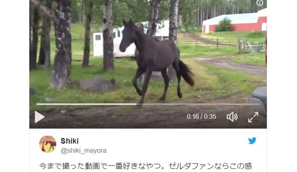 Is this the real-life? Is this just fantasy? Zelda fan summons Epona-like horse with music