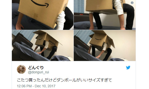 Japanese netizen dons perfectly-sized box, becomes four-legged cardboard nightmare