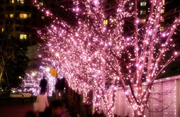 "Tokyo has ""cherry blossoms"" for Christmas thanks to gorgeous sakura tree light display"