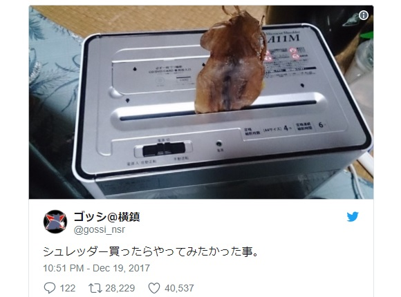 Japanese Twitter user discovers an amazing way to spice up meals using just a paper shredder
