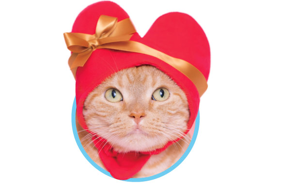 Japan now has heart hats for cute cats to wear this Valentine's Day
