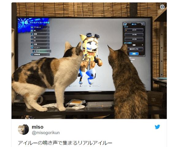 Japanese Twitter loves adorable cats' reactions to Monster Hunter: World's Felyne voices【Videos】