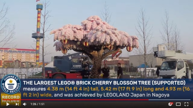 Legoland Japan celebrates first anniversary with world's largest LEGO cherry blossom tree【Video】
