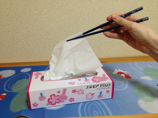 Famous anime voice actress says she was once so poor she had to eat tissues