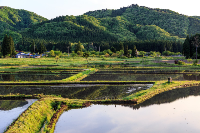 One in four young people in Japan's biggest cities thinking of moving to the countryside【Survey】