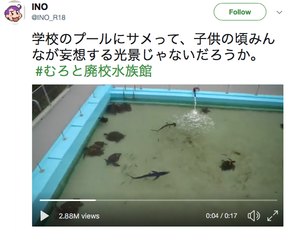 Japanese town suffers population decline, turns its local elementary school into an aquarium