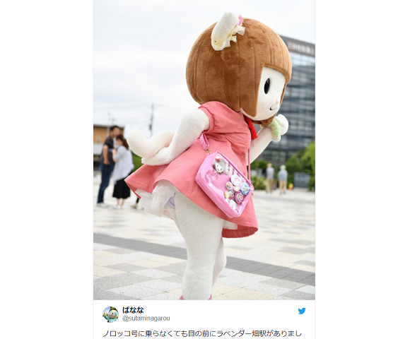 Meet Nowa Yukigami, Japan's cute-looking, panty-flashing mascot cat