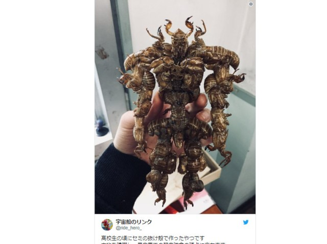 Japanese high school student makes gross yet cool action figure out of bugs
