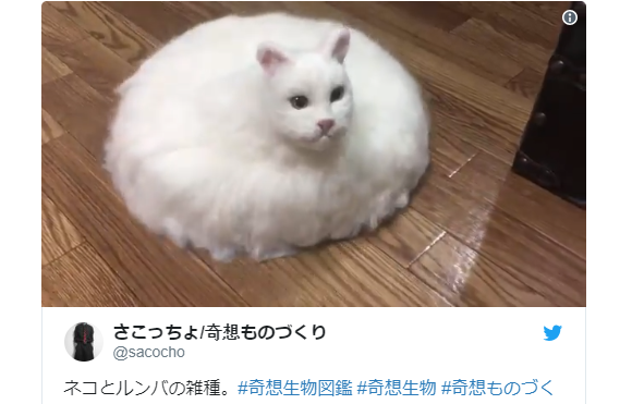 Twitter user plays God with unholy cat and Roomba fusion