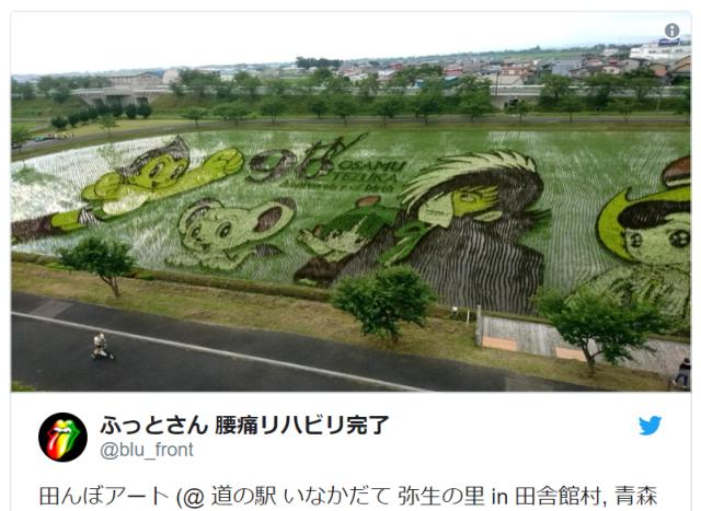 Japanese town's beautiful rice paddy art salutes Osamu Tezuka anime characters, Audrey Hepburn