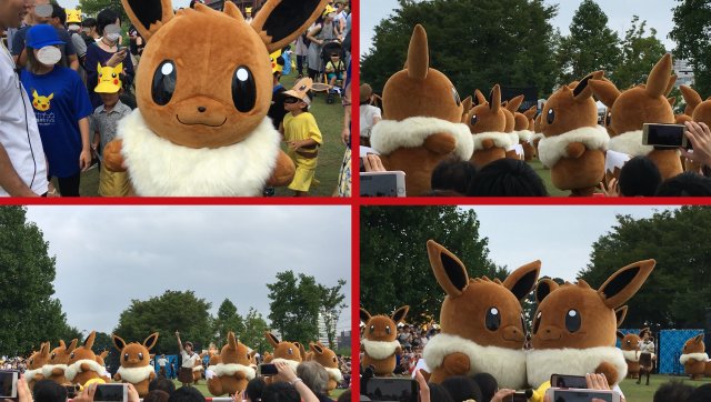 First-ever Eevee outbreak is going on in Japan right now, and it's awesomely adorable【Photos】