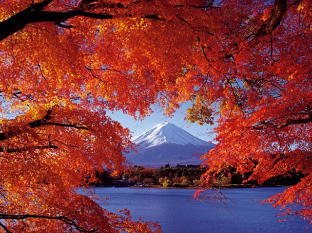10 gorgeous, must-visit places to see the autumn leaves in Japan