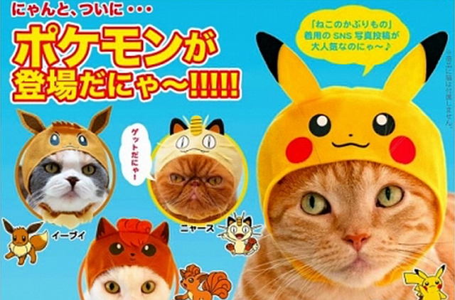 Pokémon cosplay for cats: New gacha capsule toy series from Japan
