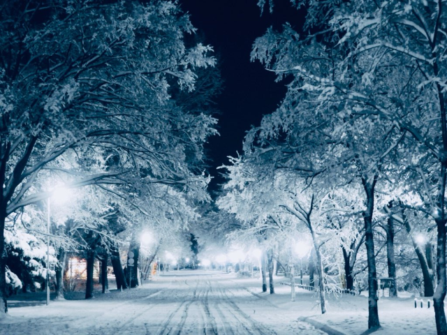 Amazing winter photos of university on Japan's northern island make us want to go back to school