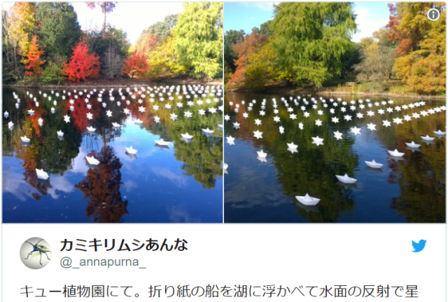 Japanese tourist cries tears of joy over creative installation of origami in the UK