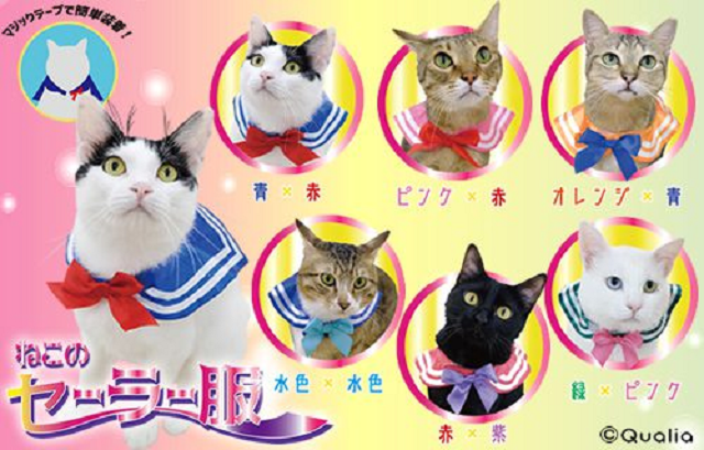 Cat cosplay collars form Japan turn your kitty into Sailor Moon in everything but name【Photos】