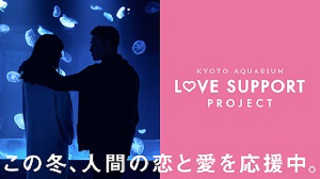 Kyoto Aquarium advises teen boy who can't find a date to become a girl (because of ichthyology)