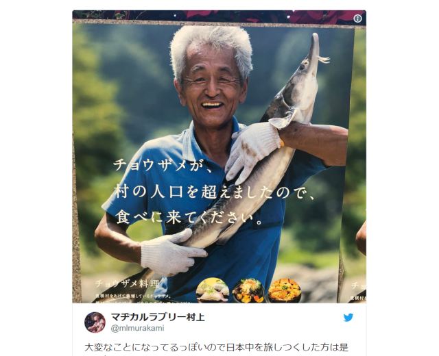 Sturgeons in Japanese village outnumber human population, used as marketing strategy