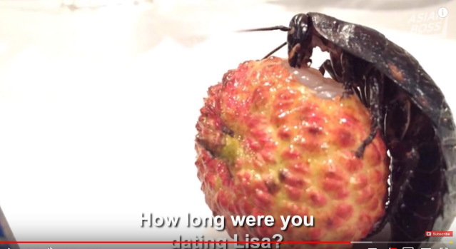 Japanese Man Dated A Cockroach